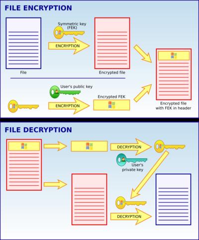 EFS operation scheme.png