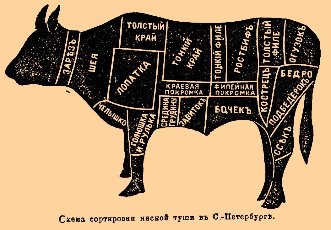 Части туши говядины схема