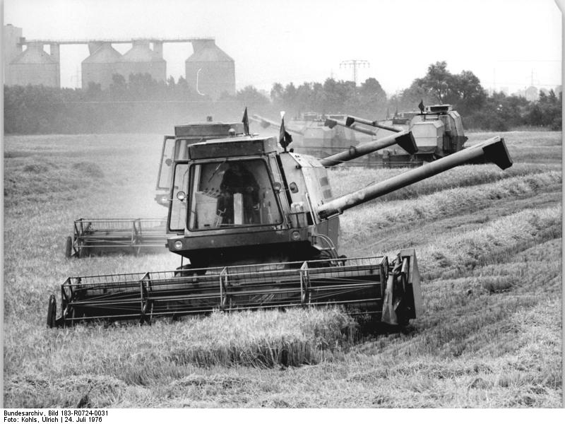 Bundesarchiv Bild