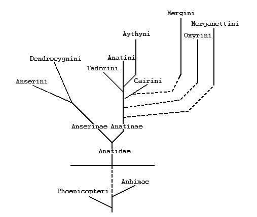 Схема теоретических