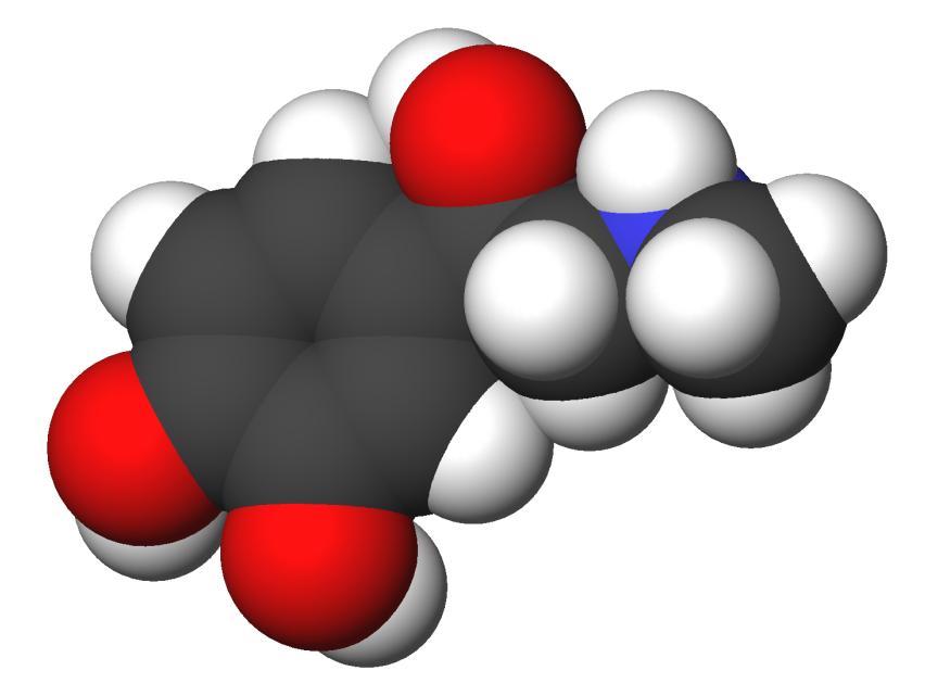 Эпинефрин фото