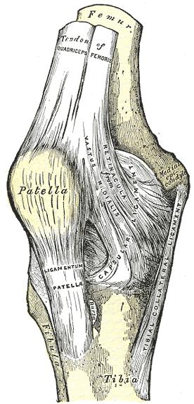 Артроскопия коленного сустава что это такое