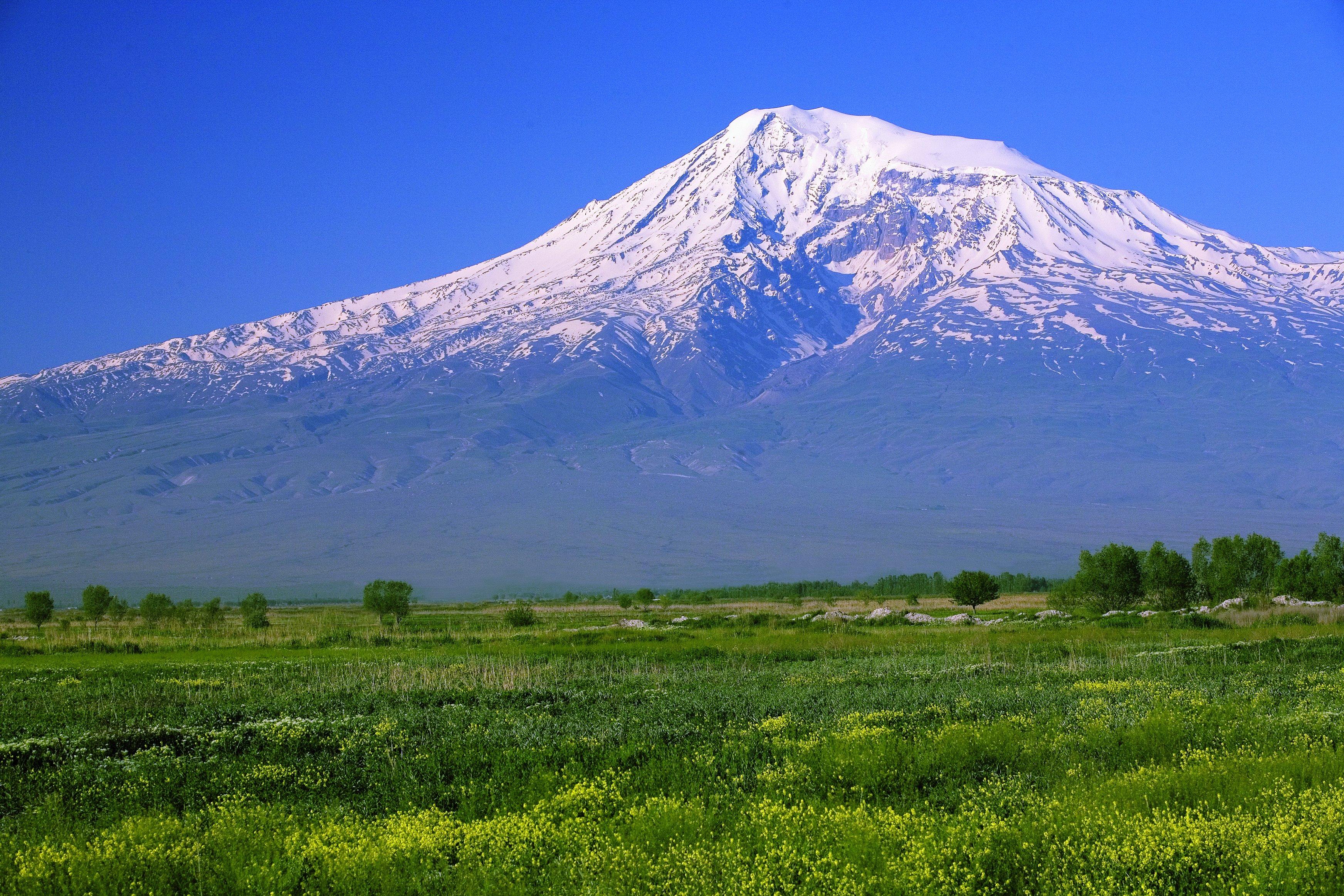 википедия википедия гора