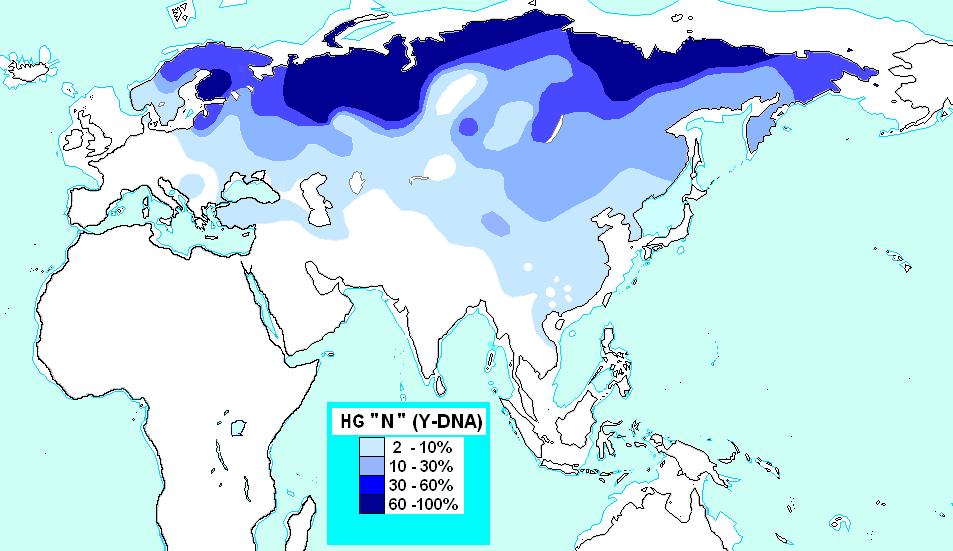 http://dic.academic.ru/pictures/wiki/files/72/Haplogrupo_N_%28ADN-Y%29.PNG