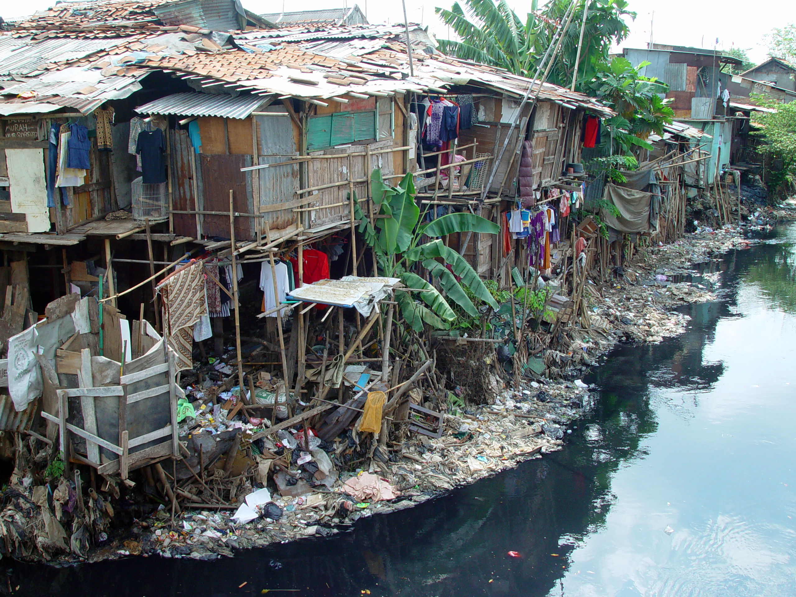 effects of urbanization in jamaica Migration in the caribbean – what do we know an overview of data, policies and programmes at the international suriname, jamaica and saint lucia.