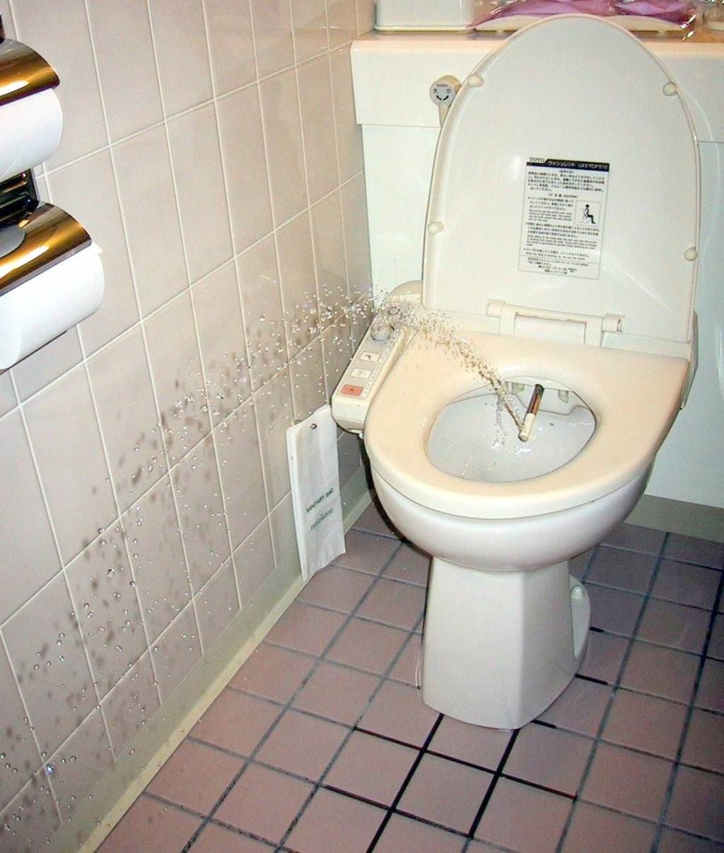 Русские закрылись в туалете 20 фотография