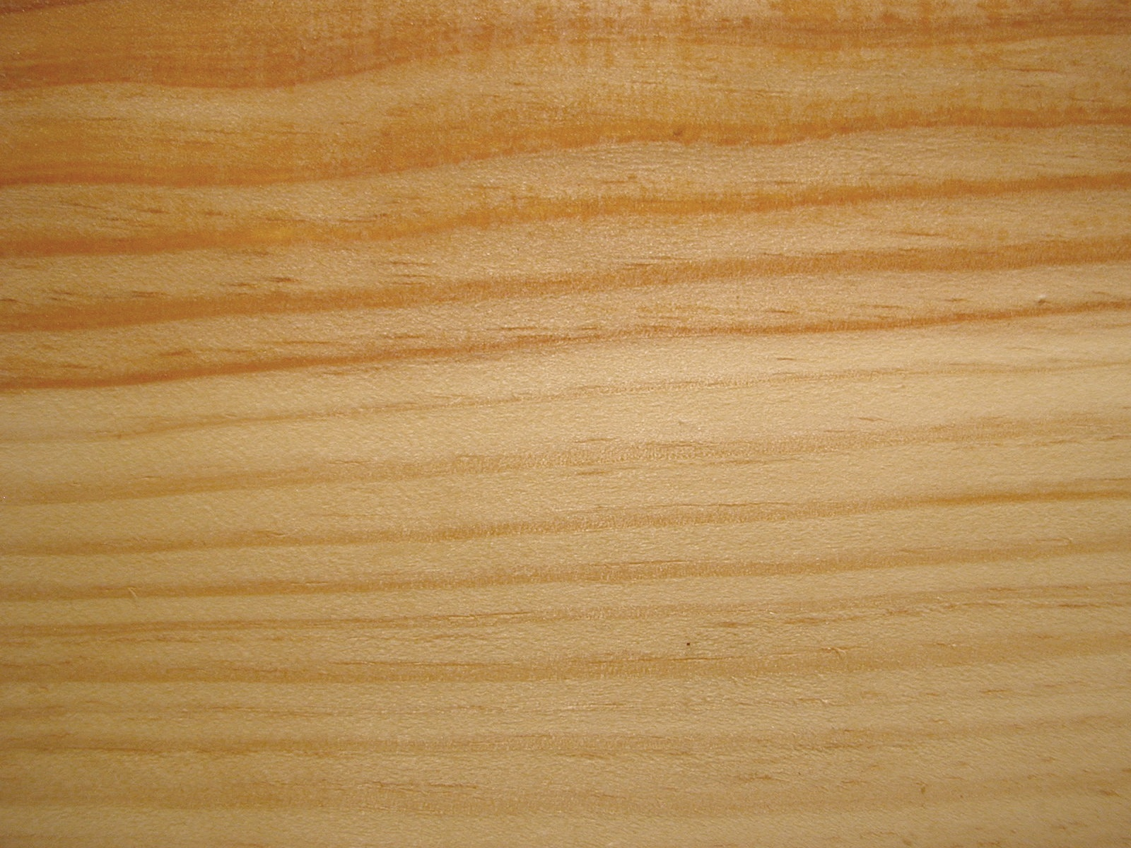 - Tratamiento para madera de pino ...