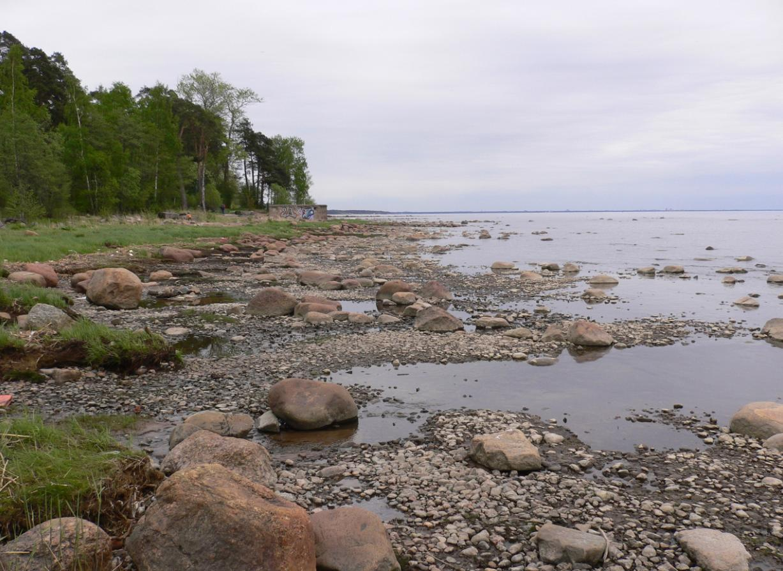 Фото эротика на берегу финского залива 2 фотография