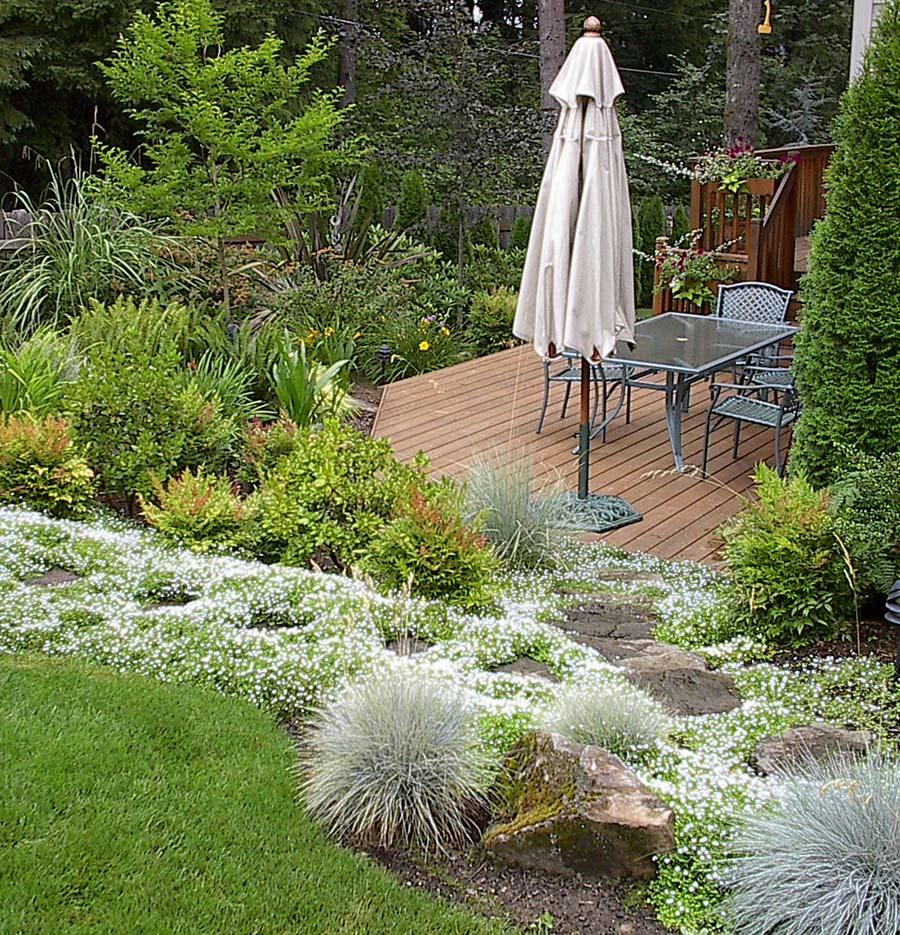 for Gardening 101 australia