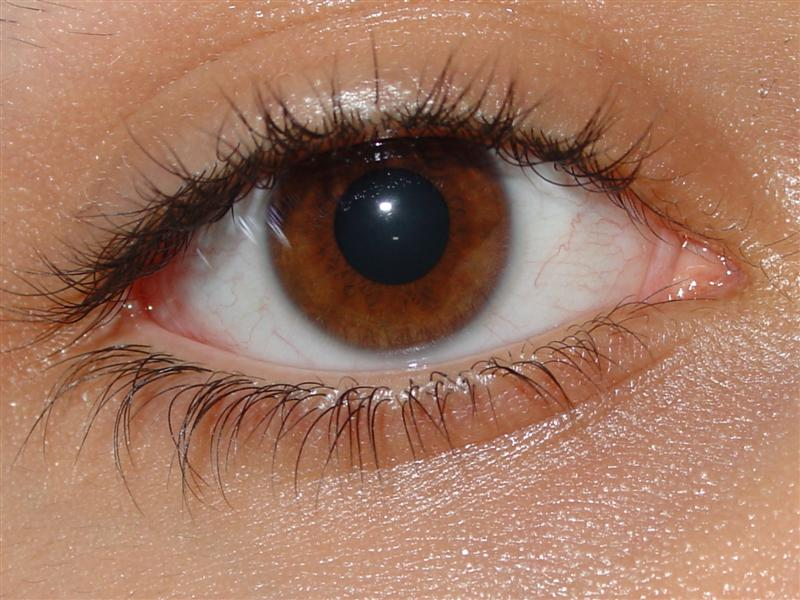 Фотография глаз