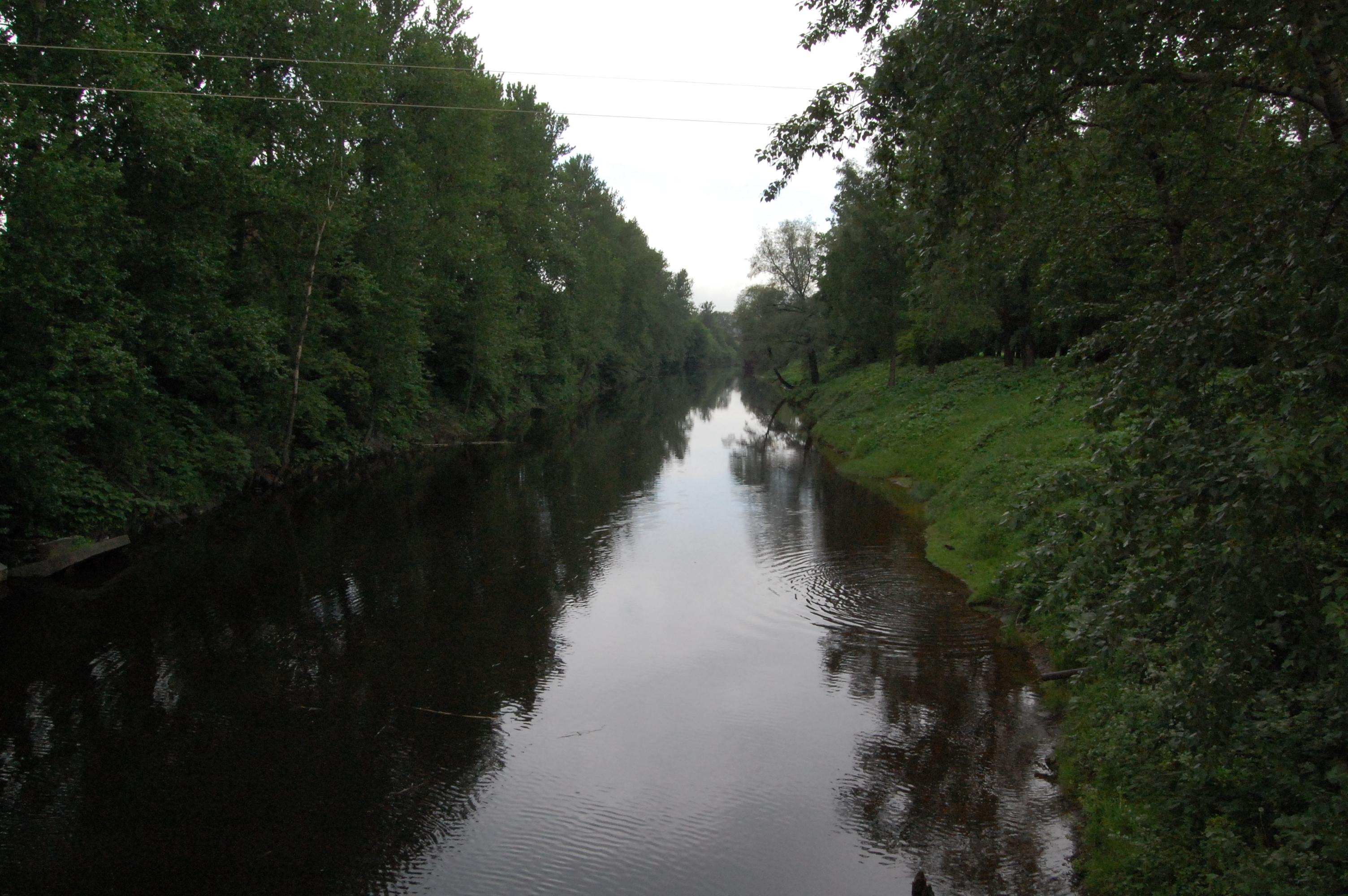 Введенский сад санкт-петербург фото
