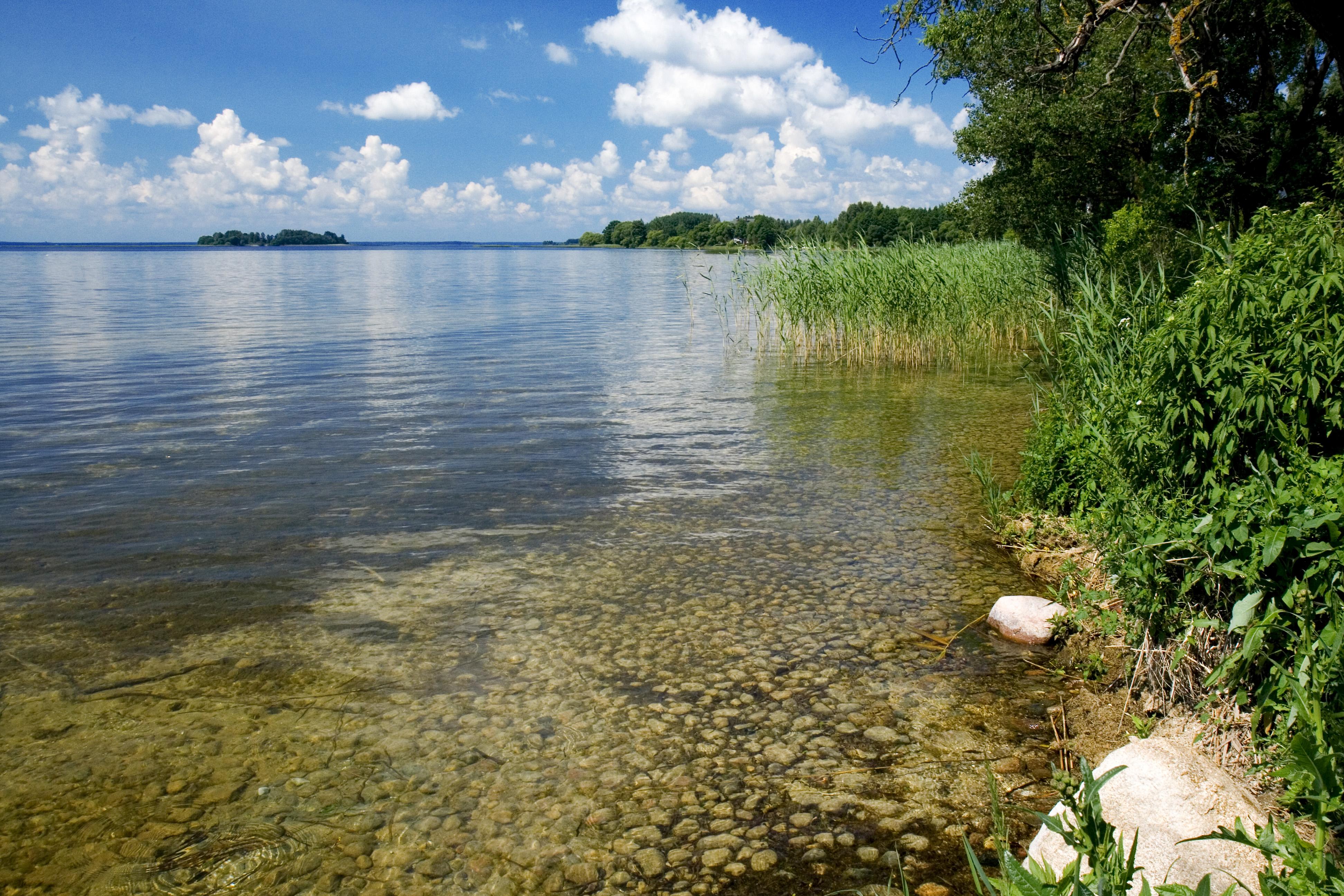 Нарочь (озеро) - это... Что такое Нарочь (озеро)? база