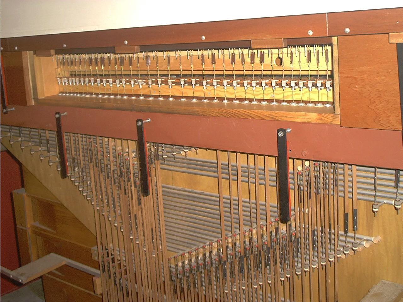 изображение органа: