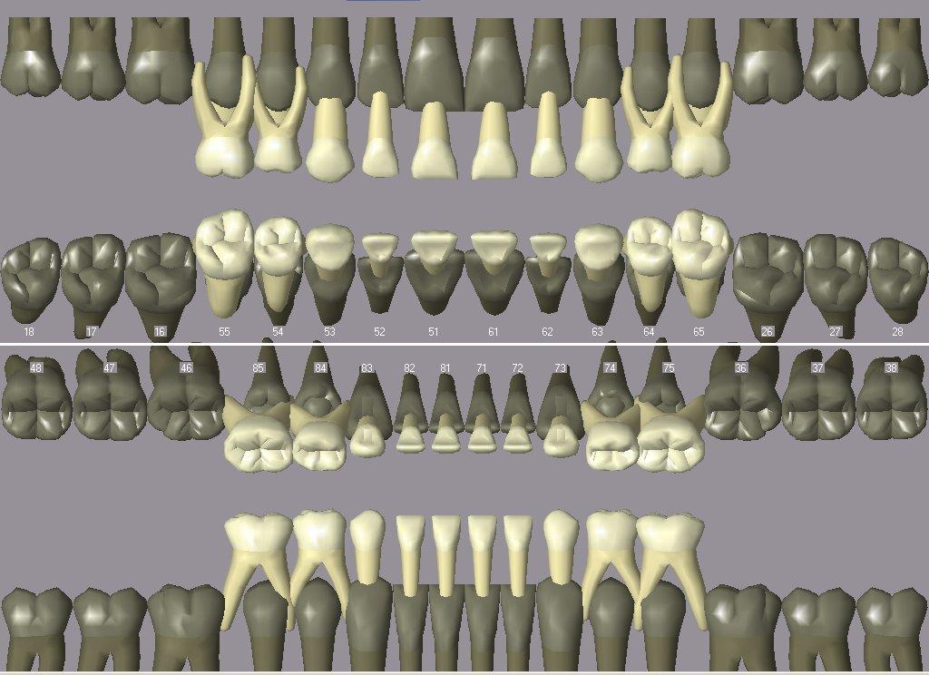 Зубная формула