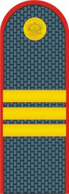 фото погон сержанта