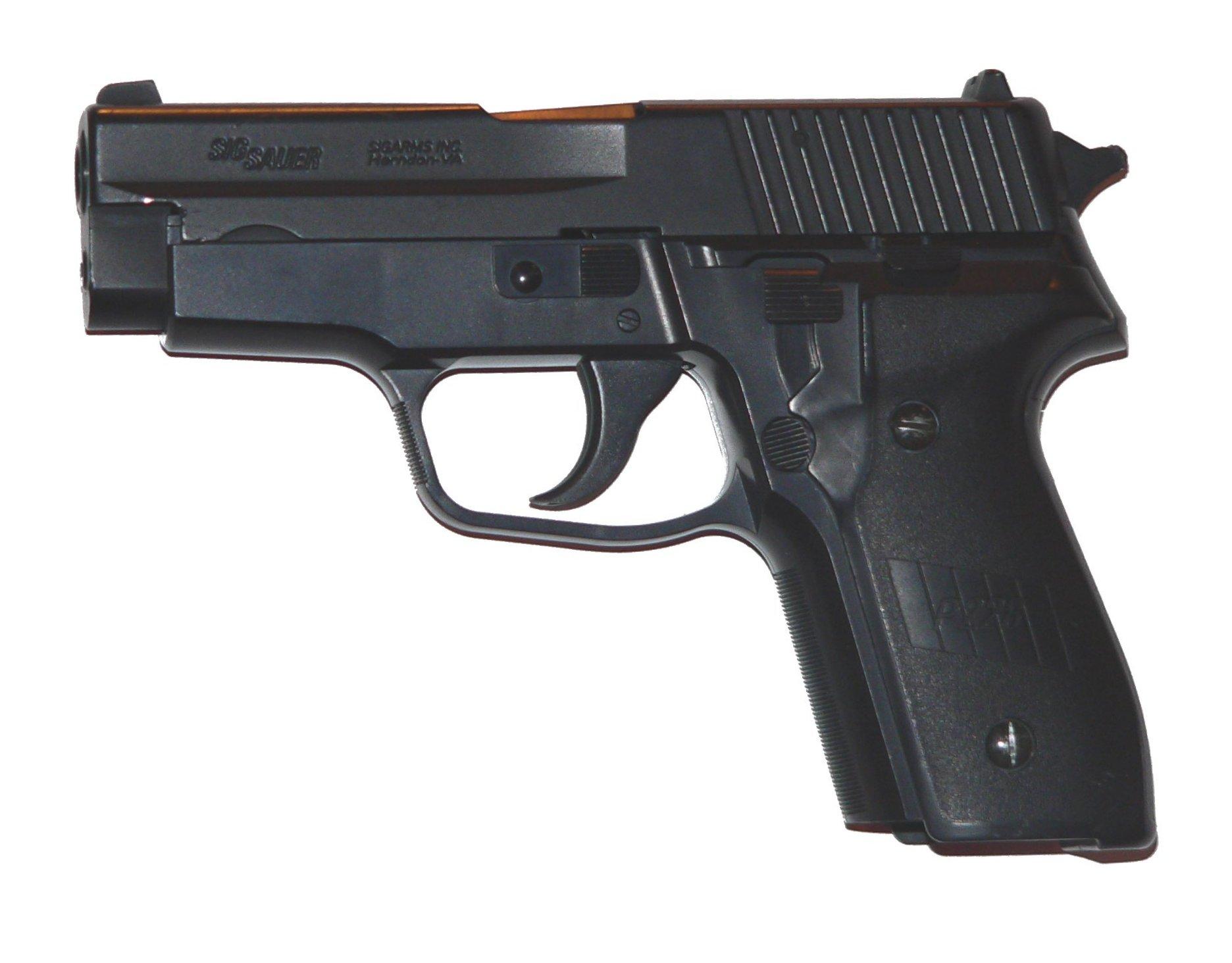 SIG-P228-p1030033.jpg