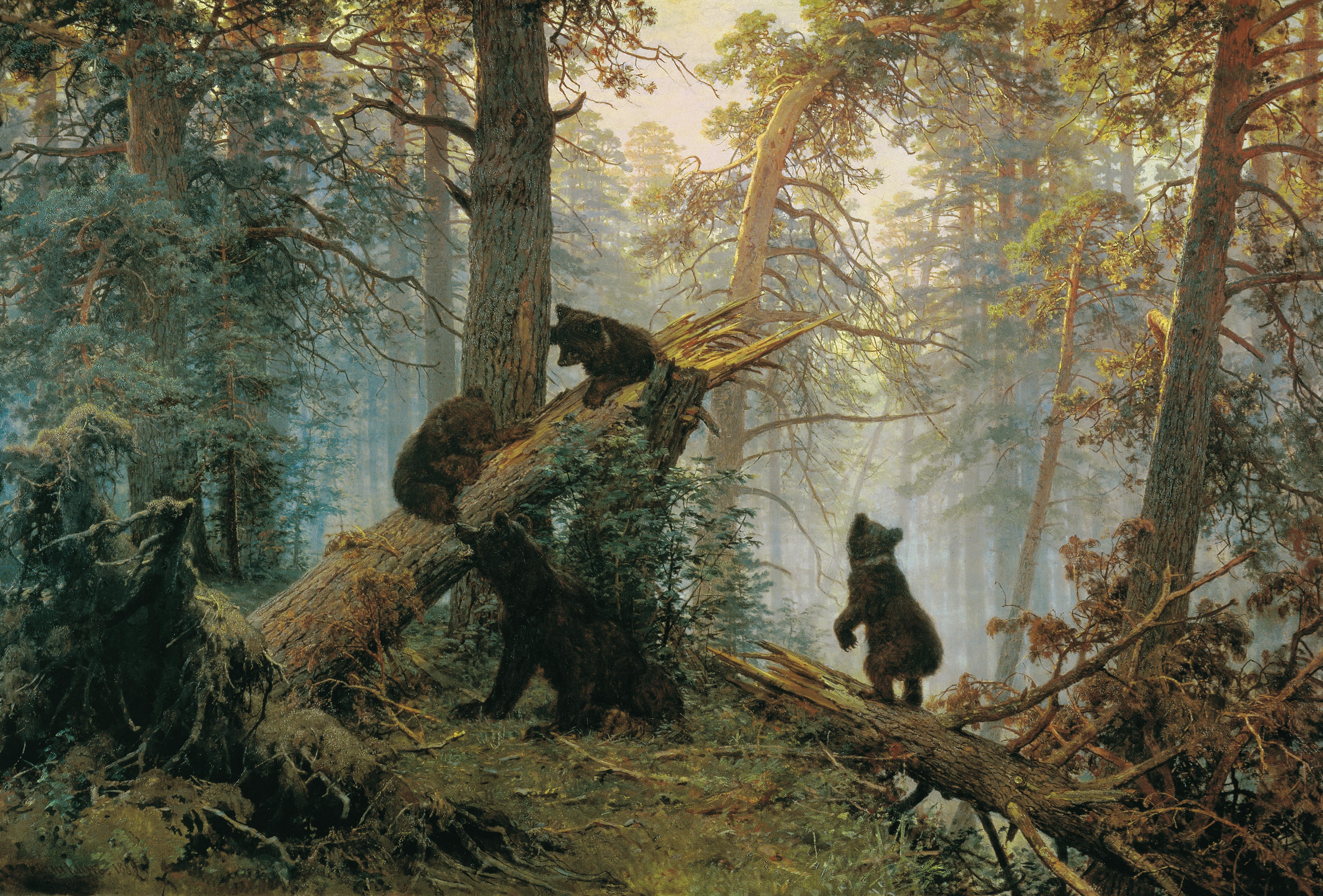 знакомства для жизни в лесу