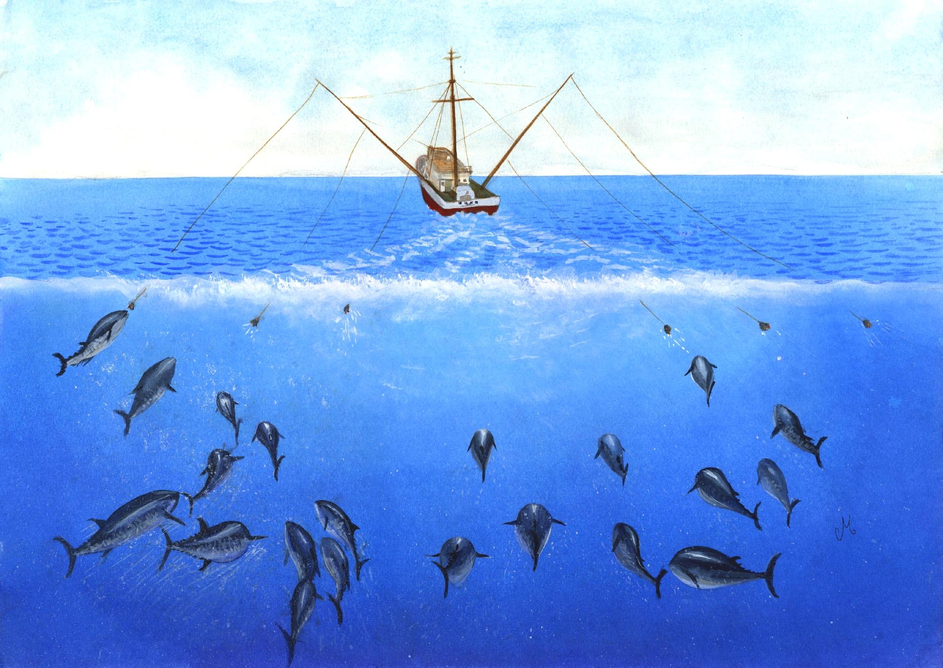 лодка для ловли рыбы сетью