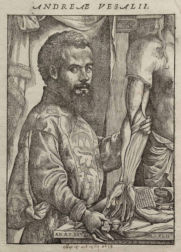 http://dic.academic.ru/pictures/wiki/files/86/Vesalius_Fabrica_portrait.jpg