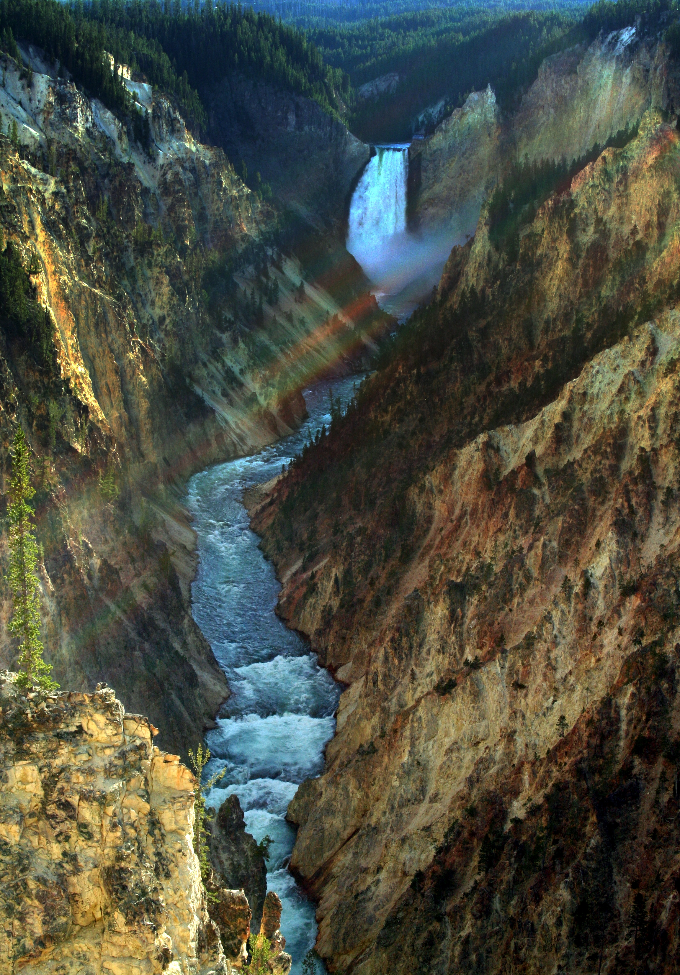Йеллоустоун (национальный парк)