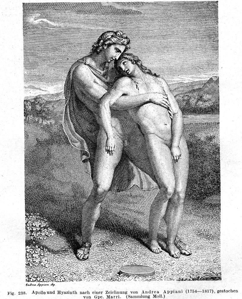 центр, отличие миф древней греции гиацинт картинки идеи воплощения, как