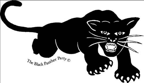 чёрные пантеры картинки